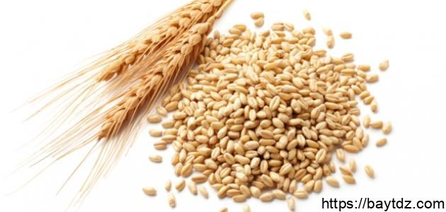 فوائد جنين القمح لليدين