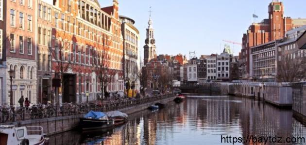 كم تبلغ مساحة هولندا
