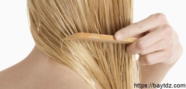 كيف يصبح شعري رطباً
