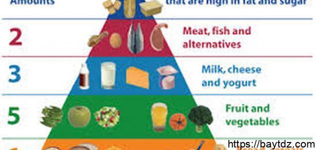 ما هو رجيم الهرم الغذائي
