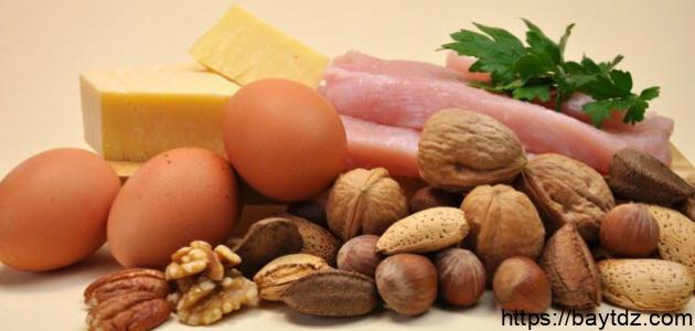 ما هو مصدر البروتينات