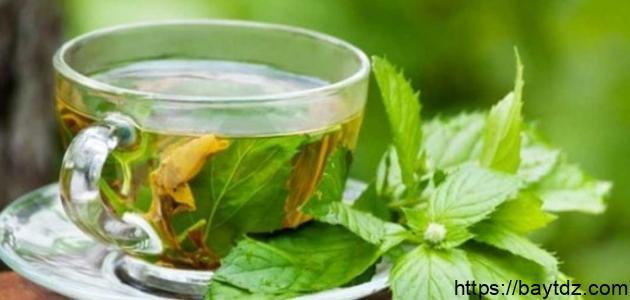ما هي فوائد الشاي المغربي