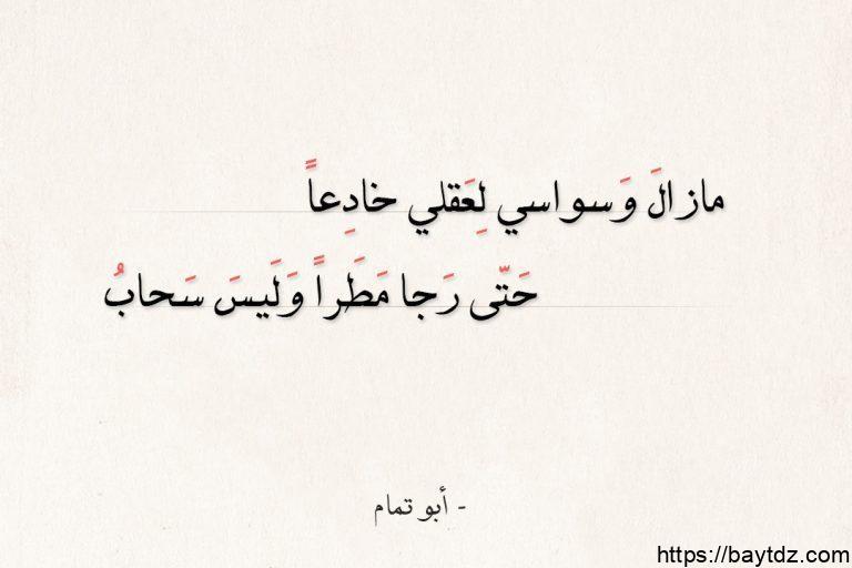 الهجاء في الشعر العربي