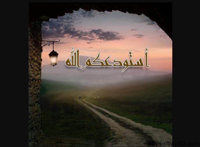 عجائب قول استودعكم الله الذي لاتضيع ودائعه