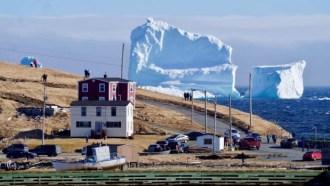 ferryland-iceberg
