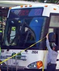 GO buses beat up