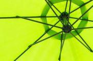 feb 18 green umbrella