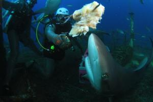 DIVING_0115_INTERVIEW-0007