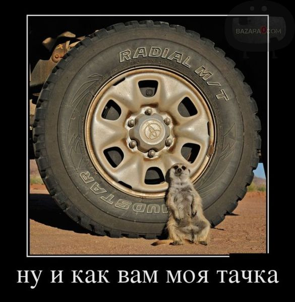 bazara0_demotivators-10-_wm