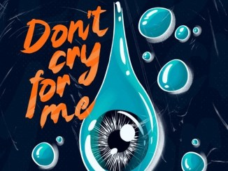 Alok, Martin Jensen & Jason Derulo – Don't Cry For Me Mp3 Download