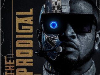 DOWNLOAD ALBUM: Mr. P – The Prodigal [Zip File]