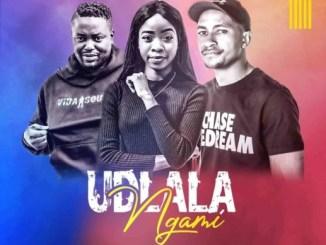 Villager SA & Vida Soul - Udlala Ugami Ft. Nunicky Mp3 Download