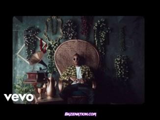 DOWNLOAD VIDEO: Tekno – Enjoy (Remix) Ft. Mafikizolo