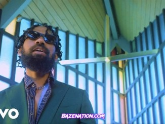 DOWNLOAD VIDEO: Phyno – Bia