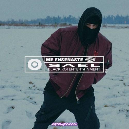 Sael – Me Enseñaste Mp3 Download
