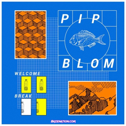 Pip Blom – It Should Have Been Fun Mp3 Download