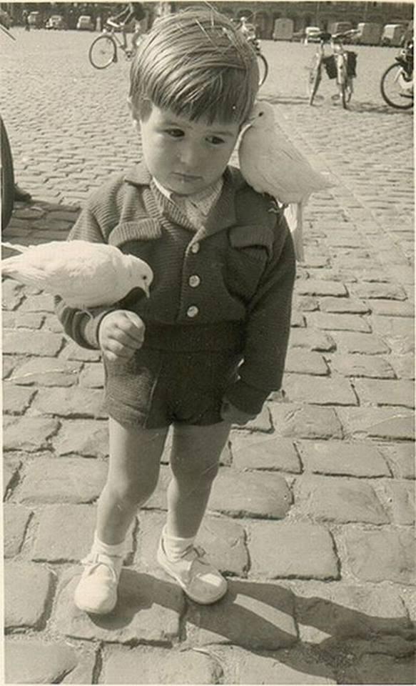 37. Мальчик и голуби - 9 мая