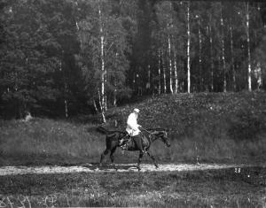 Лев Толстой на Демире. Ясная Поляна 1908 г.