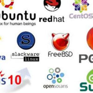 Windows Alternative OS