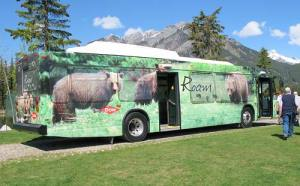 Roam_Bear_Bus
