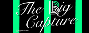 Graphic with bars for The Big Capture event