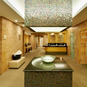 Willow Stream Spa Fairmont The Palm - - Wet AreaWillow Stream Spa Fairmont The Palm - - Wet Area