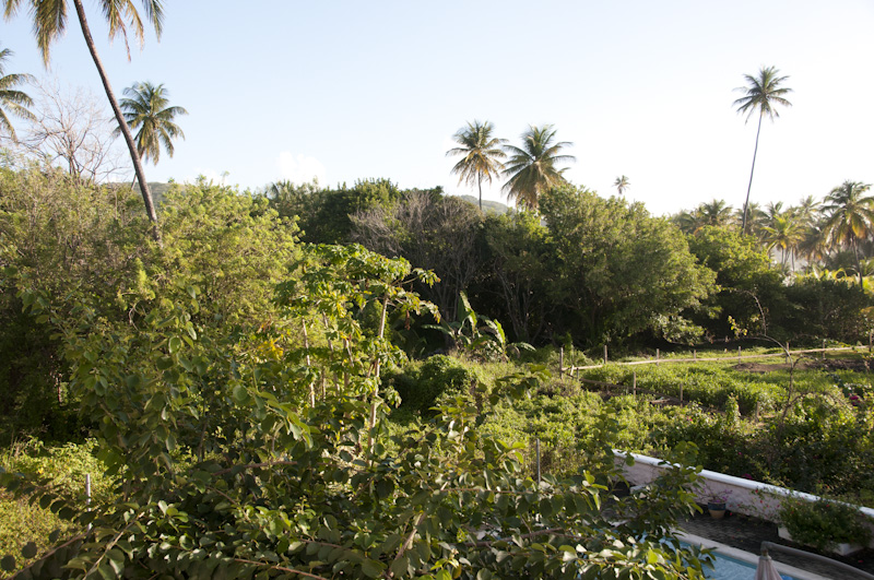 A view from the villa deck.