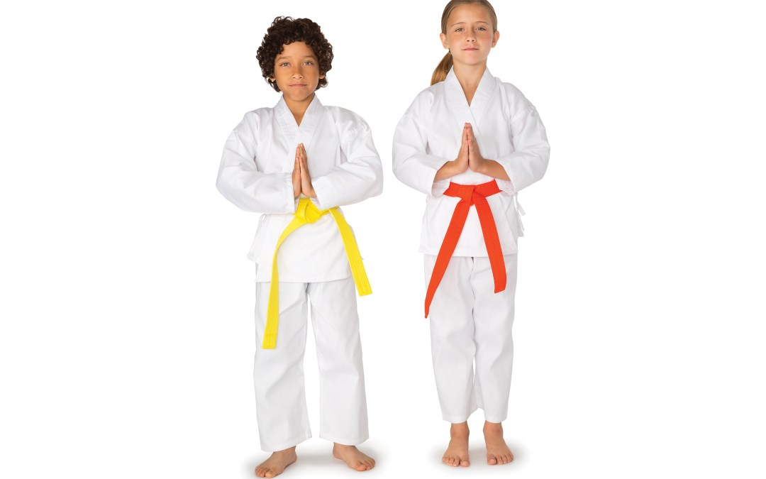 Karate (ages 5 and up)