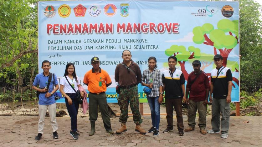 mangrove MKW c