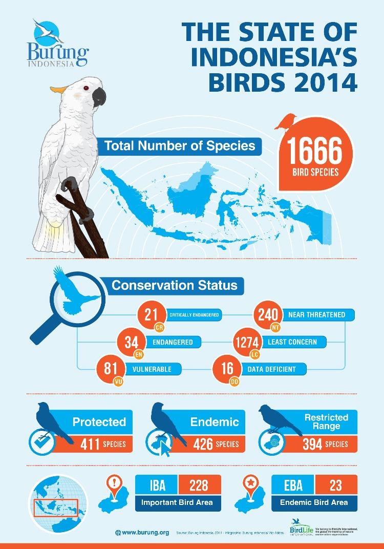 Infografis-Status-burung-2014