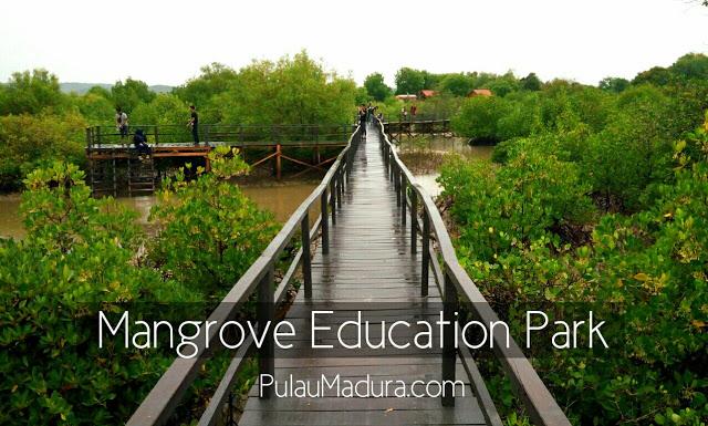 Wisata Hutan Mangrove Labuhan - Bangkalan