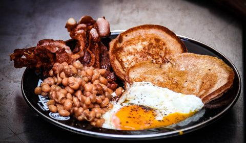 Kater Frühstück