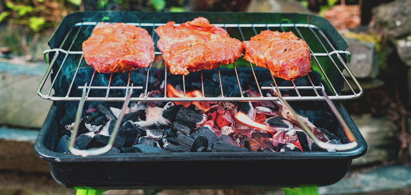 How to choose a portable grill
