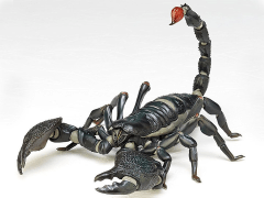 Revoltech RevoGeo Pandinus Imperator (Emperor Scorpion)