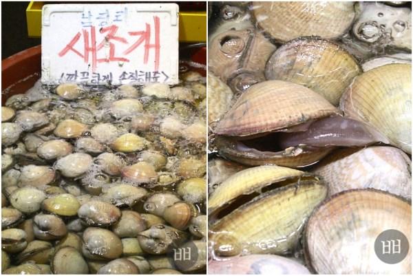 Saejogae: egg cockles, or bird clams