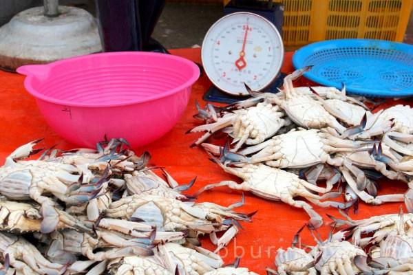 Ggot-gae: Kind of blue crab · bburi kitchen