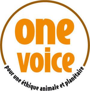 large_medium_small_logo_label_onevoice_ov