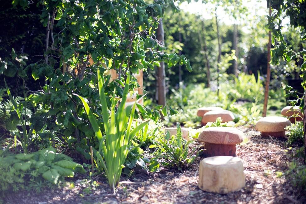 Rotunda - Community Woodland