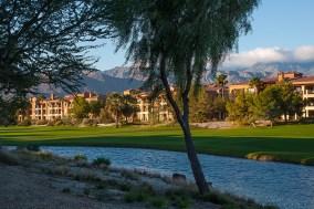 Ferguson Palm Springs