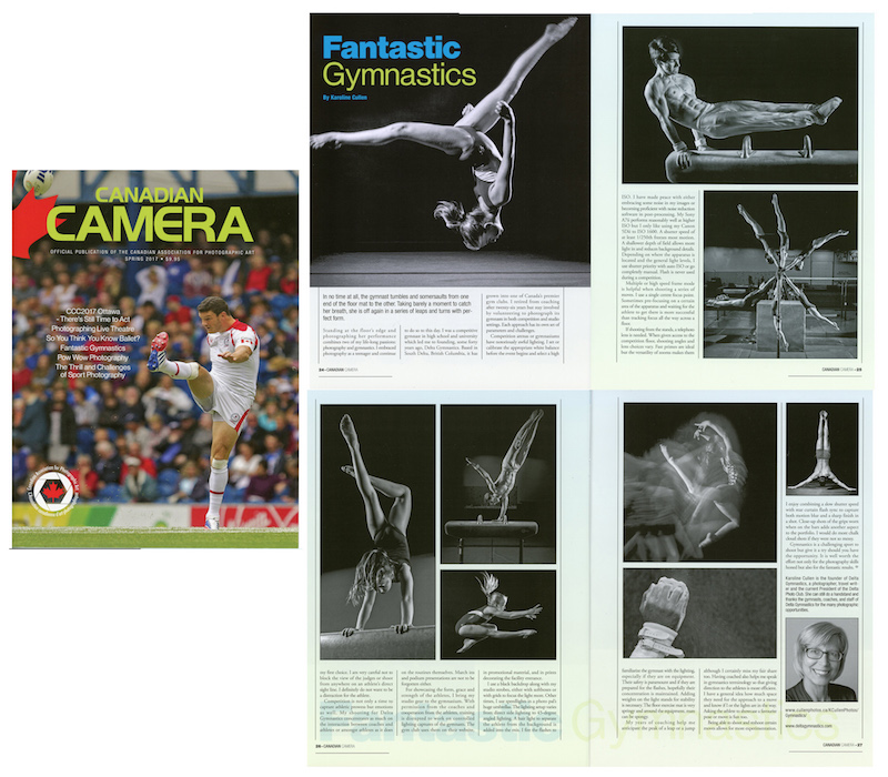 Fantastic Gymnastics small copy