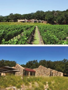 visitor-center-stags-leap-wine-cellar_002