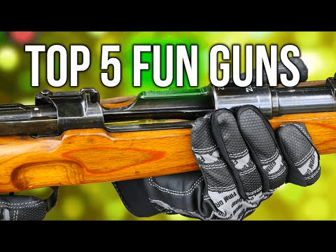 Top 5 Most Fun Guns