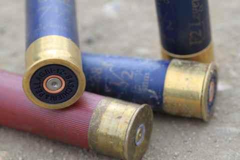 Bear slug bc firearms academy 2
