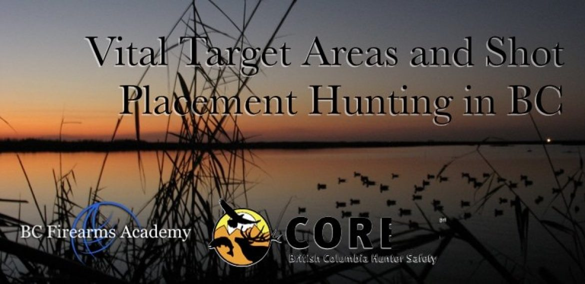 Vital Target Areas and Shot Placement Hunting in BC CORE