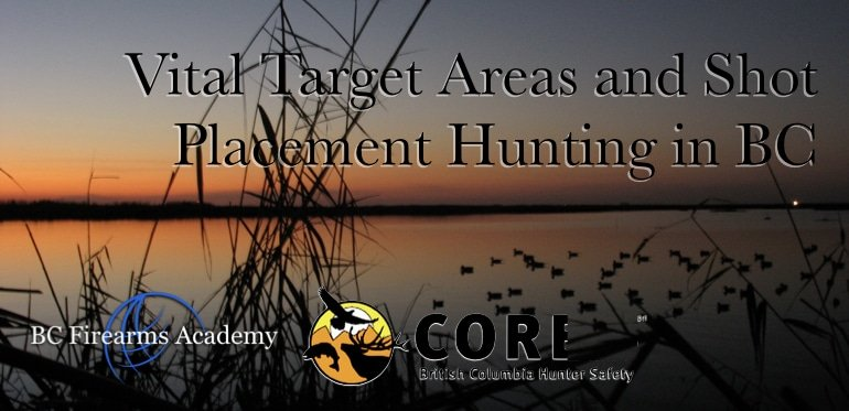 Vital Target Areas and Shot Placement Hunting in BC