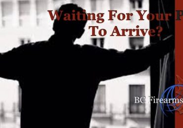 Waiting for Your PAL to Arrive?