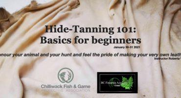 Hide-Tanning 101 Workshop. Chilliwack Saturday- Sunday Jan 30-31