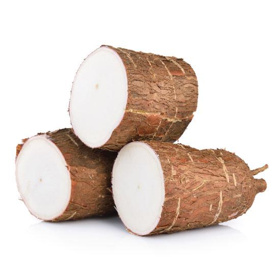 cassava or yuca for dehydration
