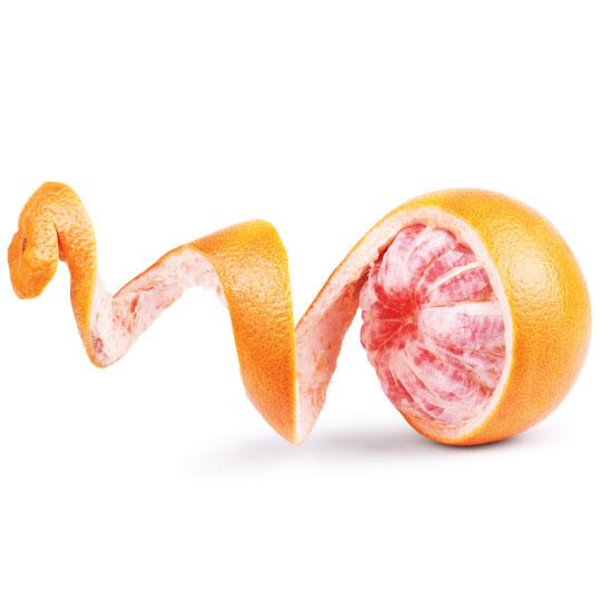 Lemon, lime, and orange citrus peels