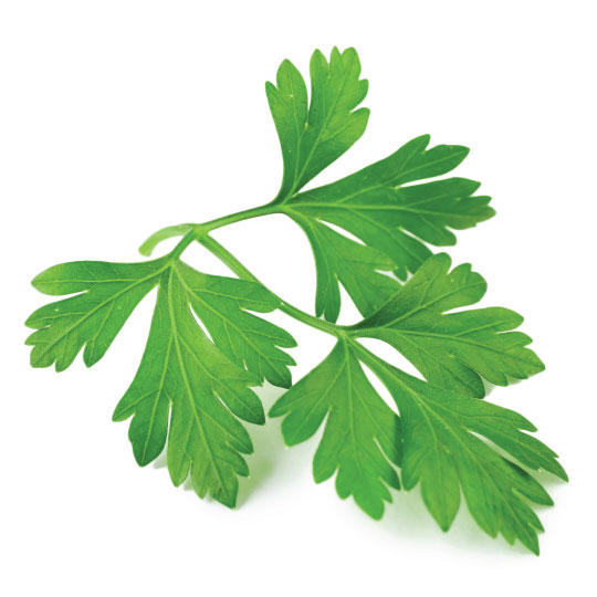 parsley for dehydration